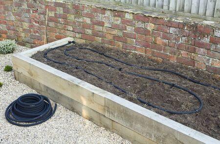 Installing soaker hose, water irrigation system in vegetable garden, UK
