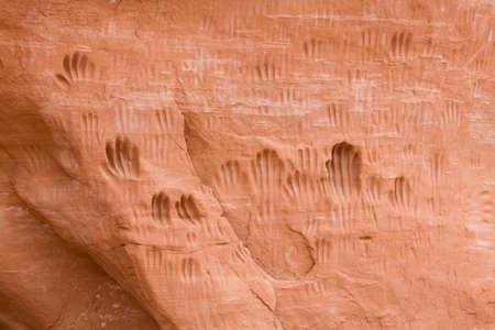 Handprints or petroglyphs worn into rock by Paleo-Indians (Native Americans). Kodachrome Basin State Park, Utah, USA