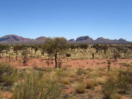 tjuta: Kata Tjuta in outback