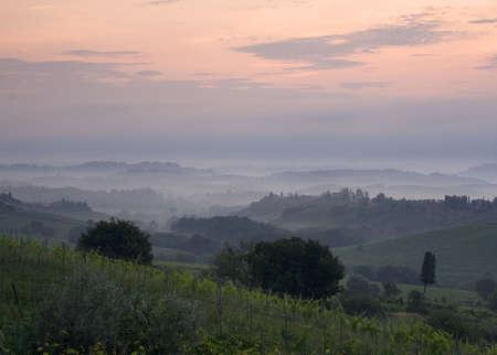 Misty sunrise over Tuscan vineyards photo