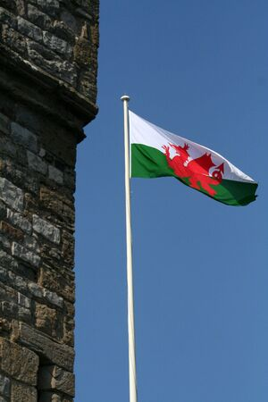 welsh flag: Bandiera gallese accanto a un castello