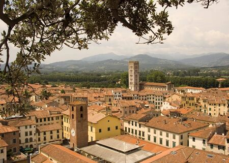 house of worship: Looking over the rooftops of Lucca in Tuscany, Italy