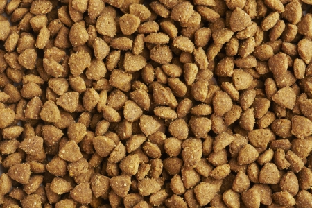 Kibble dog or cat food close up photo