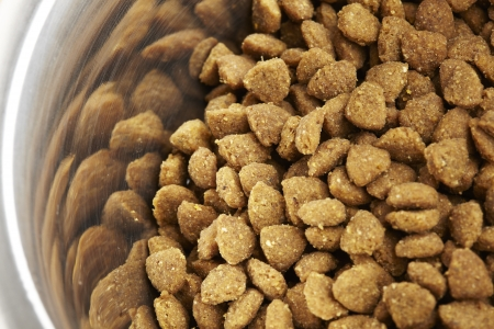 kibble: Kibble dog or cat food close up in stainless steel bowl Stock Photo