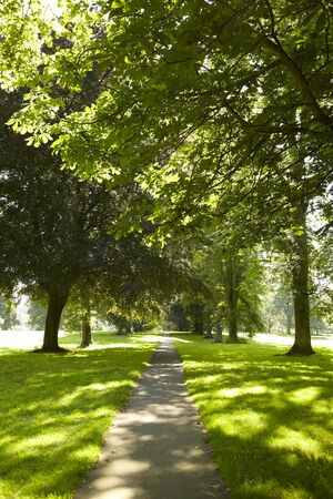 View of a park on a sunny summers day. Abington Park Northampton