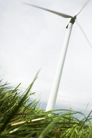 wind turbine: Wind Turbines in wind farm field