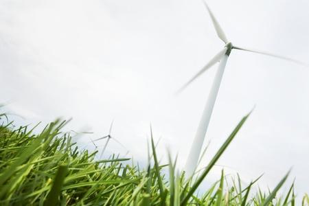 wind farm: Turbinas de viento en el campo e�lico