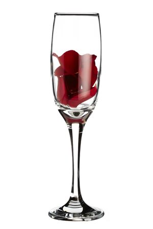 romantically: Red rose petals inside champagne glass on white background