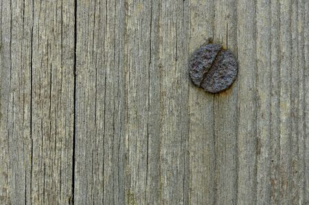 Macro shot of a wooden board with rusty nail head, background Stock Photo