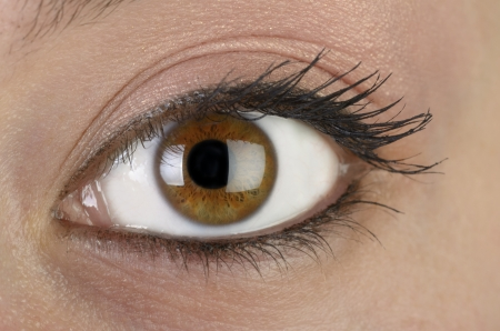 closeup of female eye, macroshot, studio, flashlight Stock Photo - 14680042