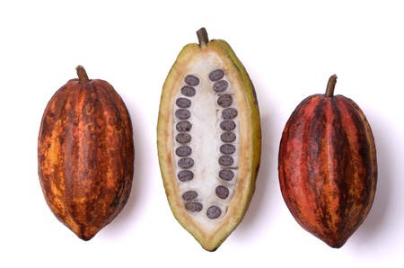 three fresh cocoa fruits, isolated photo