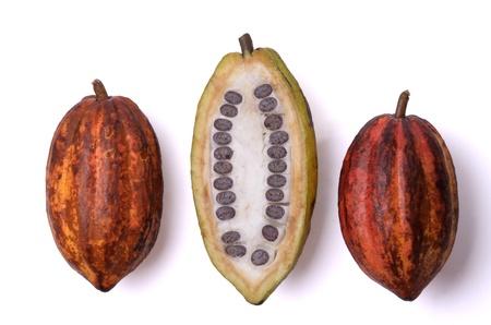 cacao: tres frutas frescas de cacao, aislados