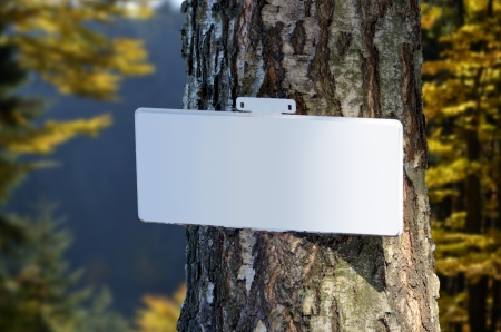 trecking: Blank sign on trunk of tree in autumn forest, Outdoor Stock Photo