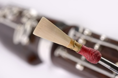 double reed: Bassoon Detail, double reed mouthpiece, Studio Shot