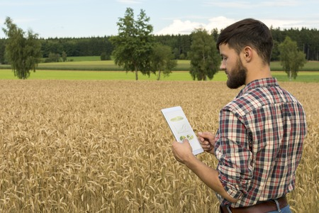 Young farmer with tablet inspecting crop, Outdoor Shot photo