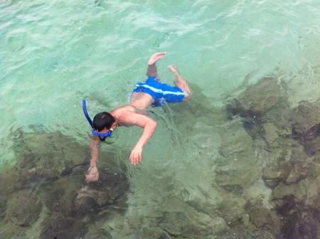 snorkling: Finding nemo Stock Photo