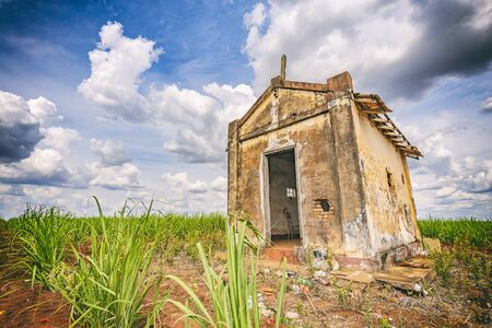 abandoned factory: Abandoned old chapel inside a sugar cane plantation - Brazil countryside