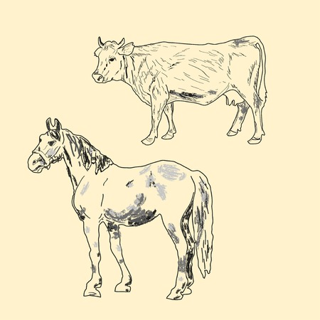 cow and horse on a light background Vector
