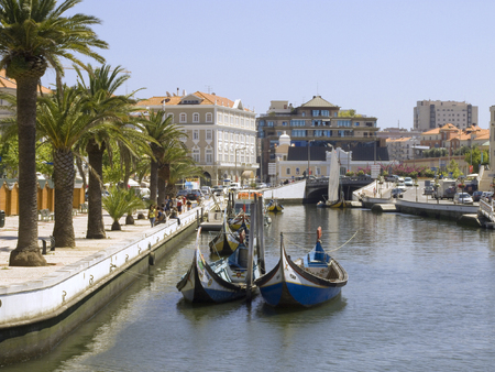 Detail from one water canal in Portugal, Aveiro