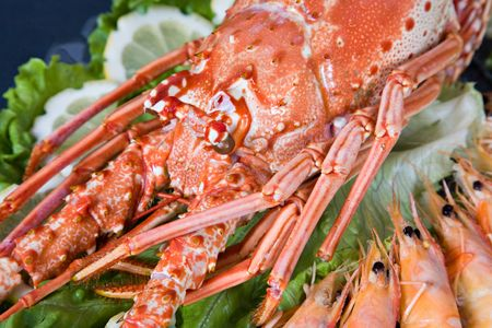 Fresh and delicious seafood - lobster and shrimp