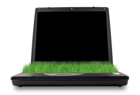 comunication: Computer with grass in the place of keyboard