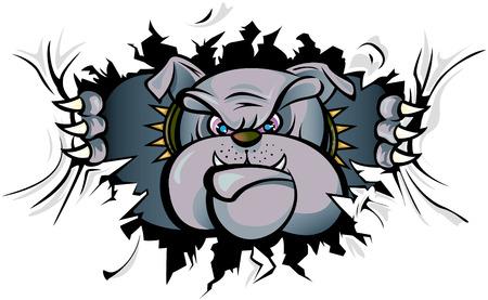 bulldog: Bulldog attack  Illustration