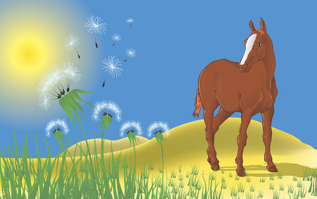 Landscape with a horse and dandelions Vector