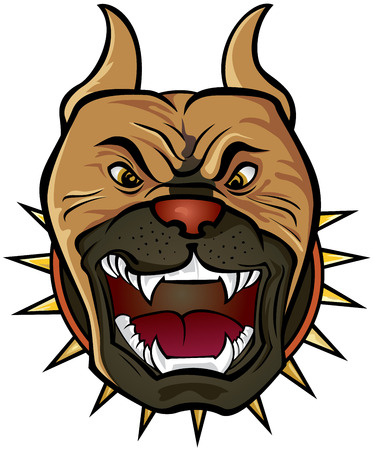 snarling: Pit bull Terrier head