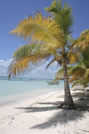 Tropical island and carabbien sea photo