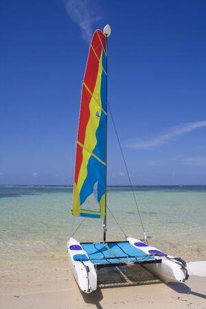 Catamaran in the coat line photo