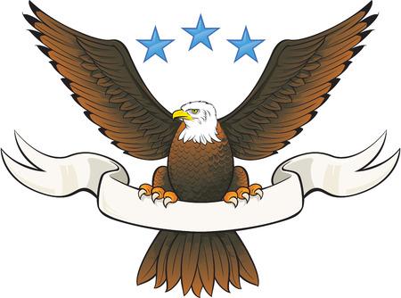 eagle: Bald eagle insignia  Illustration