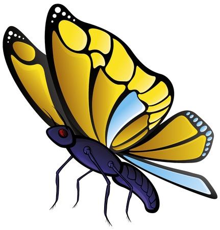 mariposa caricatura: Mariposa Vectores