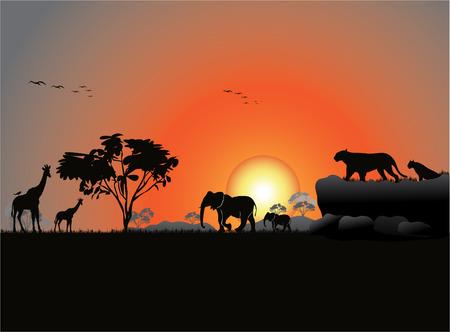 frond: Illustration of a jungle silluete Illustration