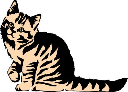 eyes looking down: cat illustration Illustration