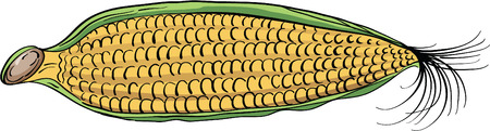 husk: Yellow corn