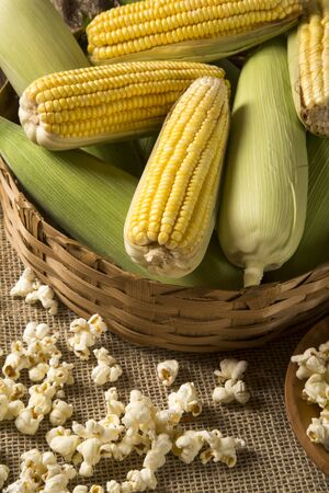 popcorn bowls: Corn maize and popcorn on a table.