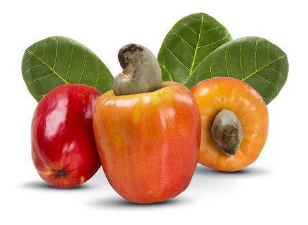 few cashew over a  white background. Fresh fruit 스톡 콘텐츠
