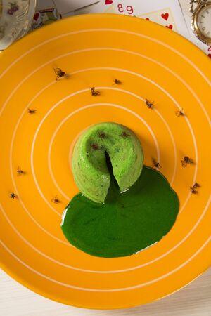gateau: petit gateau with green sava ant.