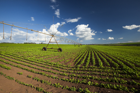 Industrial irrigation equipment on farm field under a blue sky in Brazil. Agriculture. Reklamní fotografie
