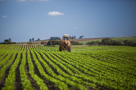 Machine working at peanut field under a blue sky. Agriculture.