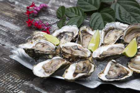 aphrodisiac: Tasty oysters on ice with lemon. Wood background.