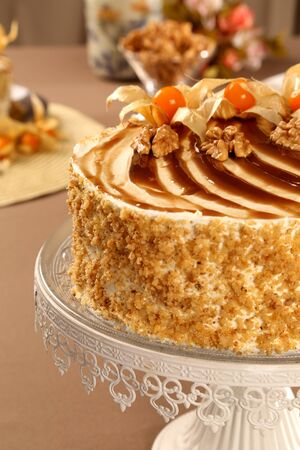 Macro close up of appetizing white chocolate cake with walnuts and Physalis with out of focus cake in background Standard-Bild