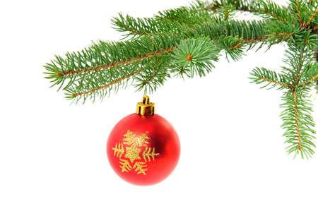 handed: Christmas ball handed on pine branch isolated over white background Stock Photo