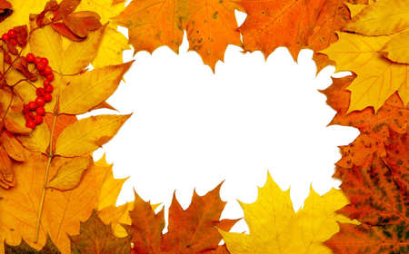 autumn fall leaf frame background Stock Photo - 5071022