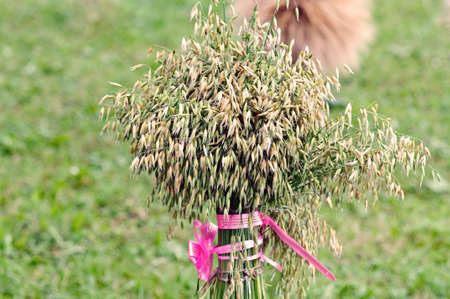 Sheaf of spikes with the red ribbon  photo