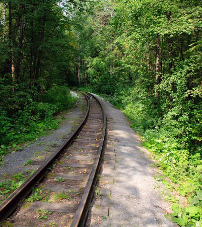 railroad track winding through forest Stock Photo - 5537624