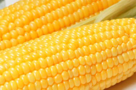 Corn cob close-up weergave van achtergrond of textuur  Stockfoto