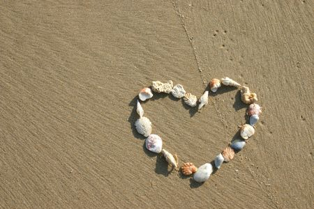 adore: Seashells in the shape of a heart.