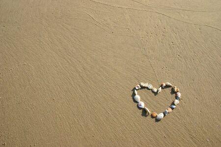 Seashells in the shape of a heart. Stock Photo - 5083772