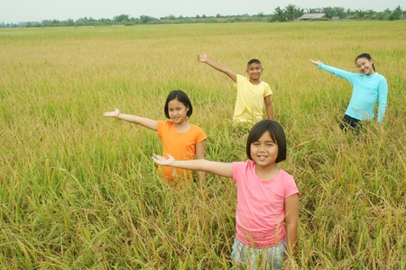 Children hanging in the rice field photo